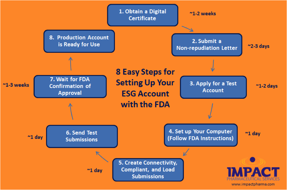 8 easy steps to establish an electronic submissions gateway esg 8steps thecheapjerseys Choice Image